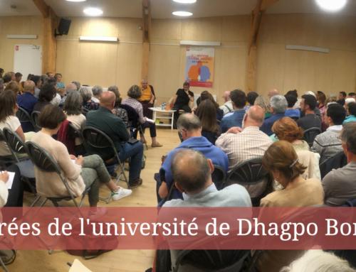 23 janvier > Soirée de l'université de Dhagpo Bordeaux – L'attention distordue : un éclairage sur nos biais cognitifs
