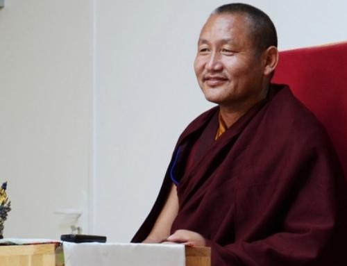 Khenpo Gyaltsen : de la nature de bouddha aux vers de terre